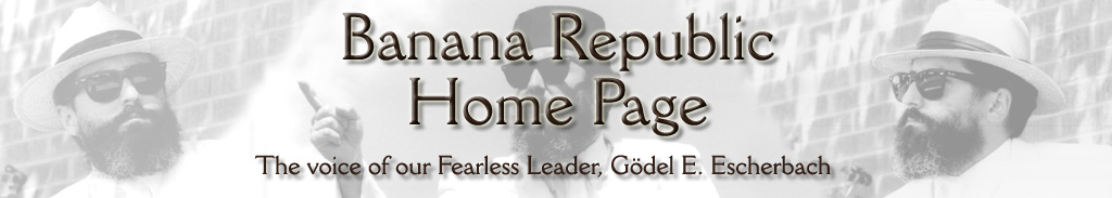 Banana Republic Home Page Header